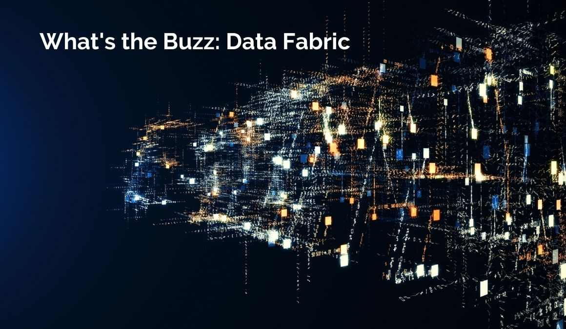 what's the buzz: data fabric